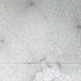 193 - Croissance - Etude 2 - Cellules de Voronoï -Tracé manuel